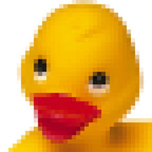 1463348978_Ducky_Head_Web_Low-Res2